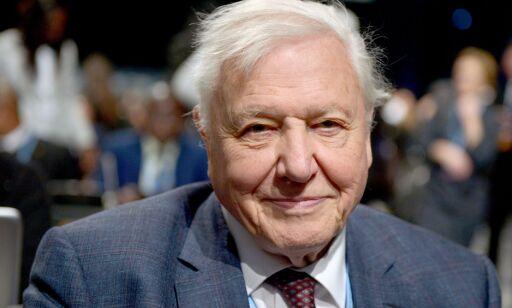 Attenboroughs dystre advarsel: - Sivilisasjonen vår kan kollapse